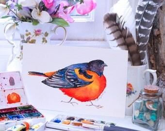 Baltimore Oriole Watercolour, Colourful Oriole Art, Cute Oriole Art, Baltimore Oriole Original Art
