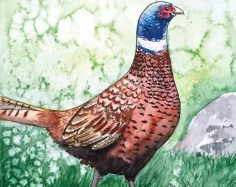 The Pheasant postcard