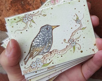 """Starling #1 with flowers, ACEO (3.5"""" x 2.5""""), Artist Trading Card, original ink and watercolour painting"""