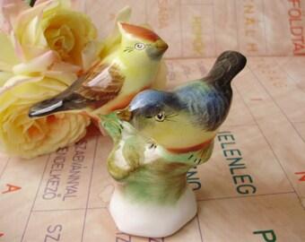 Vintage HUNGARIAN porcelain bird  figurine,,FINCH COUPLE,handpainted