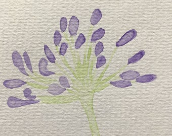 Hand Painted Watercolour Agapanthus Greetings Card