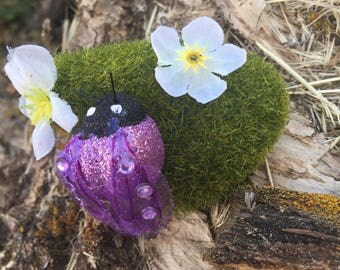 Purple lady bug on moss with flowers on a magnet