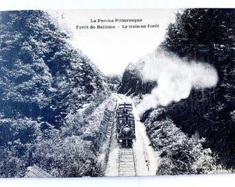 Le Perche Pittoresque - Foret de Belleme - Vintage postcard