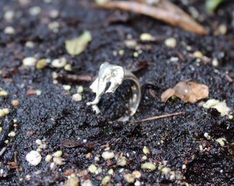Elephant ring Silver 925