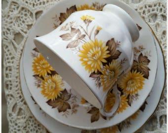 Queen Anne Teacup Trio Set Midcentury Teacup Saucer Side Plate Set Vintage Kitchen and Dining High Tea Tableware
