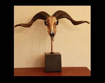 RAM skull on pedestal