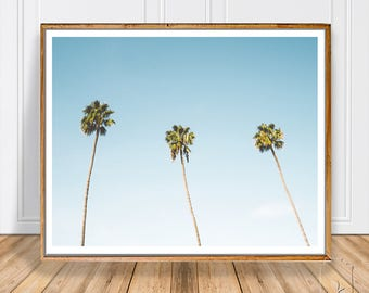 Palm Tree Art ,Palm Print ,Beach Art ,Tropical Wall Art ,Beach printable ,Printable Art ,Photography ,Palm Art Photography ,Palm Art ,Prints