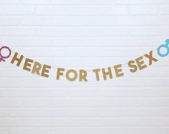 Here For The Sex | We're Here For The Sex | Gender Reveal Sign | Gender Reveal Banner | Gender Reveal Party | Baby Shower | Boy or Girl
