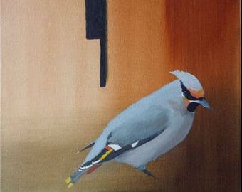waxwing oil painting 11x14
