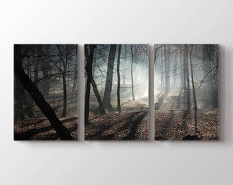 Large Wall Art Fascinating Foggy and Dark Forest Canvas Print