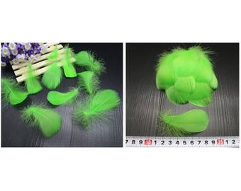 Set of 5 small green feathers
