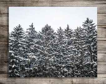 Tree Photography Print, Printable Wall Art, Digital Download