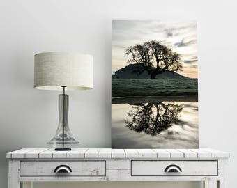Lone Oak Tree Wall Art Print -- Fine Art landscape photography, Country, Sunrise, California, Home Decor, HeatherRobersonPhoto