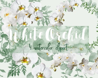 White orchid clipart | flower clipart, clipart download, clipart for wedding, floral clipart, watercolor flowers clipart, wedding clipart