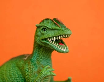 "Canvas wall art colorful plastic toy dino dinosaur photograph orange green kids children wall art ""Rawr"""