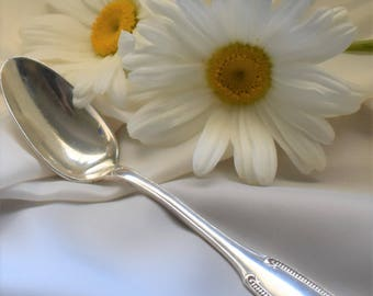 """Single ERCUIS tea spoons, ice cream spoons, silver plated, French vintage, beaded """"Princesse"""" design."""