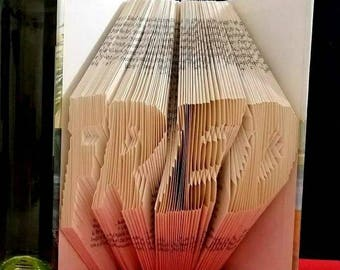 folded folded book, name of the book