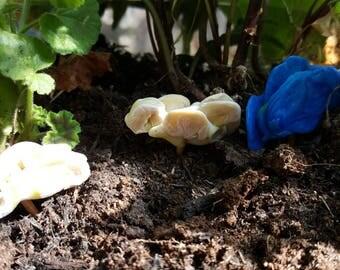 3x Miniature Fungus/Decorative Fungus