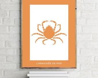 Shellfish Design poster - Crab minimalist 30x40cm