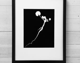Ground Ivy, black botanicals, roots, botanical art, bathroom wall art, kitchen art, wedding art, wedding gift, black botanicals,original art