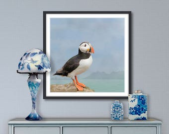 Digital painting, Puffin, digital download and print on canvas or paper art
