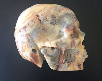 Mexican Crazy Lace Agate Crystal Skull