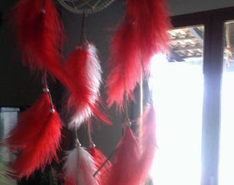 Native American dream catches