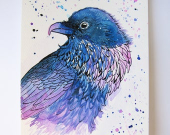 Drawing / illustration graphic Crow Indian ink and watercolor