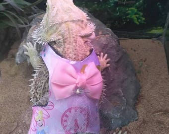 Bearded Dragon Harness