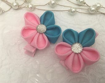 Set of 2 Pink and blue flower hair clips
