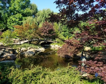 Japanese Garden at Botanical Gardens in Kentucky