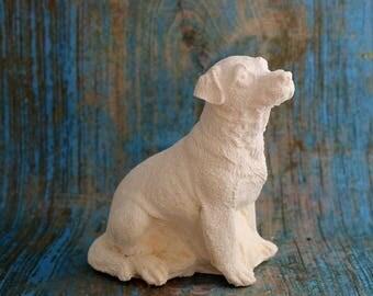 Labrador plus size coat sitting in paint detail