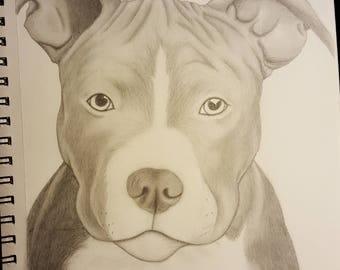 Custom Drawings
