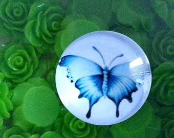 Glass printed round cabochons, mixed color, butterfly cabochons 25 x 7 mm