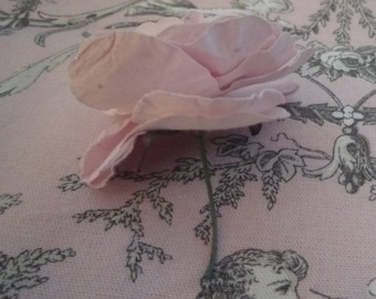 Small pale pink rose and its green leaf