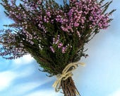 Heather - Calluna Vulgaris - Calluna - Dried Flowers - Home Decor - Primitive Decor - Natural Flowers - Bunch Of Flowers - Floral Decor -