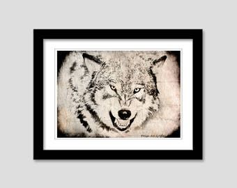 Animal collection - Wolf
