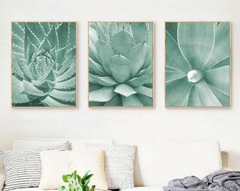 Succulents Print,Set Of 3 Prints,Mint Green Decor,Cactus Print,Cactus