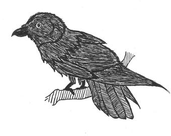 Digital Picture of a Raven // Black and White Home Decor // Wall Art