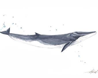 Watercolour print whale A5