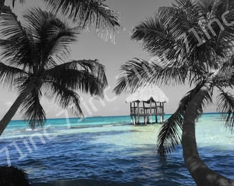 Private Island - Belize - Black and White - Color Touch