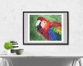 Scarlet Macaw watercolor painting