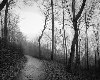 Mountain Trail in December-B&W,Nature Photography,Nature,Outdoors,Wall Picture,Home Decor,Prints,Steps,Trail,Autumn,Winter Picture,Fine Art