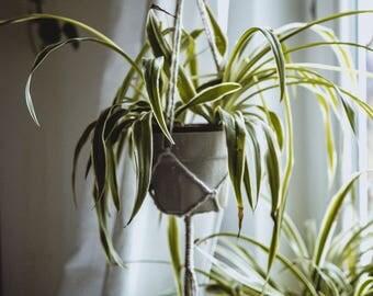 Macrium Plant Traffic Light