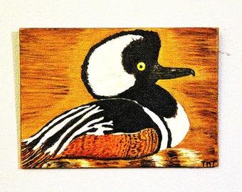 Waterfowl Portrait