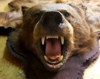 FAUX BEAR Skin Rug, Animal Skin Rugs, Throw Rugs, Log Cabin Decor,