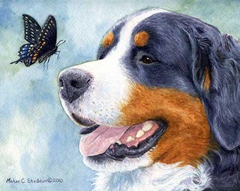 Bernese Encounter A Limited Edition Bernese Mountain Dog Print