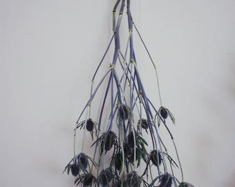 Dried Blue Thistle