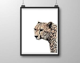 Cheetah, Cheetah Print, Wildlife, Cheetah Photo, High Contrast Photo, Creative Photo Art, Wall Decor, 8x10, Digital Download, Instant Art