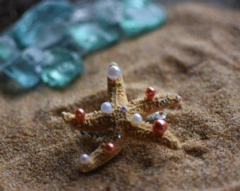 White and coral starfish hair clip